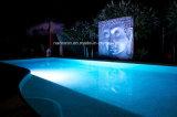 Lampada chiara subacquea di N-Lp295 LED /Underwater/lampada del raggruppamento con 2 anni di garanzia