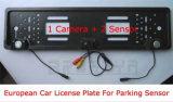 3 in 1 sensore europeo di parcheggio dell'automobile della targa di immatricolazione