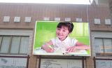 Affichage P8 de publicité polychrome extérieur