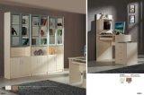 Cabinet vivant moderne de livre de porte de meubles de chambre à coucher
