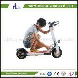 低価格の熱い販売の高品質の新式の二人用の電気スクーター