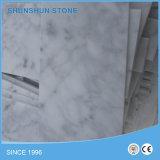 Mattonelle di marmo di Bianco Carrara per la parete e la pavimentazione