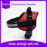 نمط كلب لباس محبوب منتوج ليّنة أنابيب أسلاك مهمّة صدرة