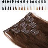 ブラジルのVirgin Human Hairの200g 220g 240g Clip
