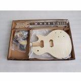 Beste elektrische Gitarren-Fabrik-Langspielplatte-Gitarren-Installationssätze für Verkauf