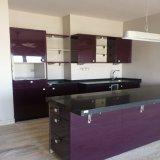 Europäische Art-Küche-Möbel kundenspezifischer Küche-Schrank