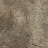tegels van de Vloer van het Porselein van 60X60cm Inkjet de Rustieke (JS60710PM)