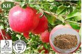 Кислота естественной выдержки корпуса Pomegranate Ellagic