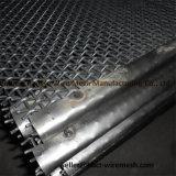 Engranzamento de fio frisado elevado do aço inoxidável do carbono