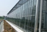 Handelsaluminiumrahmen-Polycarbonat-Blatt-Gewächshaus für Vegebable und Frucht