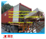 Good Quality /Manucafture/Factory Supply Gypsum Board