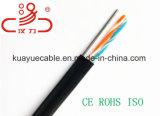 Ftp LAN-Cat5e im Freien mit Kurier-Kabel/Computer-Kabel/Daten-Kabel/Kommunikations-Kabel/Audiokabel/Verbinder