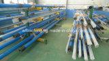 Des Öl-und Gas-Geräten-Glb120-21 doppelte Pumpe Kopf-der Schrauben-Pump/PC/wohle Pumpe für Verkauf