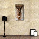 Pintura al óleo de la alpaca para la decoración casera