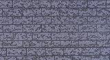 Comitati di parete decorativi rivestiti impressi dell'isolamento del metallo per la Camera prefabbricata