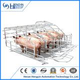 Cassa di gestazione della strumentazione di azienda agricola del maiale
