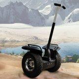 Carro al aire libre de la vespa eléctrica de la movilidad del camino