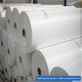Tissu tissé stratifié par pp blanc