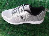 Verschiedene Farben-bereift preiswerte Preis-Fabrik Sport-Schuh-Fußbekleidung