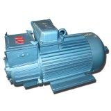 Motor elétrico que iça o motor de C.A. do motor do guindaste do motor