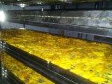Machine de séchage de fruit/machine de déshydratation/déshydrateur industriel de nourriture