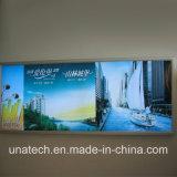 Tabellone per le affissioni dell'interno/esterno di pubblicità di media del LED della bandiera della casella chiara