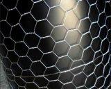 熱い浸された電流を通された六角形の金網か家禽は一致する