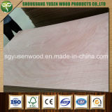 Hot Sale 4X8 Feet folheado Contraplacado / Fancy Plywood 9mm 12mm 15mm 18mm