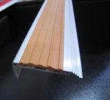 Обнюхивать лестницы выпушки плитки карборунда алюминиевый
