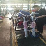carro de vaciado grande del cargo 150/200/250cc Motortricycle/motor Trike