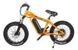 Gros vélo de montagne électrique de Megnsium (OKM-1334)