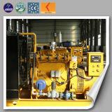 Ferme de vache Using le générateur de biogaz d'Evironmental 10kw
