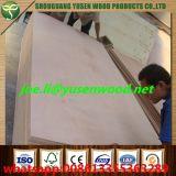 Contre-plaqué de décoration de la pente 18mm de meubles de faisceau de peuplier ou de faisceau de bois dur