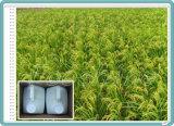 Promoteur d'évolution liquide de régulateur de croissance de plantes du chlorure 50% SL de chlorméquat