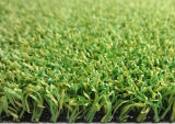 لعبة غولف خضراء رياضة عشب, مرج