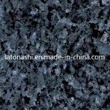 Het natuurlijke Graniet van de Parel van de Steen Blauwe voor Tegel, de Bovenkant van de Ijdelheid, het Bedekken
