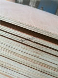 6mm Pencil Cedar Plywood Poplar Core E1 Glue BB/CC Grade