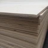 Madera contrachapada de la base de la chapa del álamo para el embalaje de la paleta o de los muebles (8X1220X2440m m)