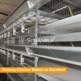 Het ontwerp van de het gevogelteloods van de grill en automatische grillbatterijkooi voor verkoop