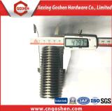 Le double goujon du chanfrein A2 de l'acier inoxydable 304 boulonne M48*100mm