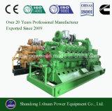 Biomassa ou gerador do gás da gasificação para o Husk do arroz/microplaqueta de madeira/palha