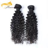 Wholesale keine Chemikalie 22 Zoll indische Remy Haar-Extensionen