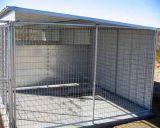 Heiße verkaufengalvanisierte Gefäß-große im Freien Kettenlink-Hundegehäuse