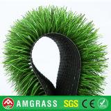 Erba artificiale approvata di SGS/Ce per calcio