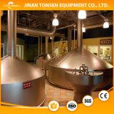 Caldaia di preparazione della birra nella fabbrica di birra del Pub