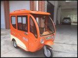 Пассажир трицикла автомобиля трицикла электрический