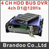 HDD a prueba de choques Type 4CH D1 Mobile DVR, Support 3G, WiFi, GPS, CMS Client de Free y software de servidor Provide de Brandoo