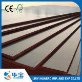 Lençóis de contraplacado de base de madeira dura de 18mm para concreto fechado
