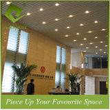 Het Plafond van het Schot van het Profiel van de Decoratie van het aluminium voor Luchthaven