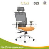Cadeira ergonómica do escritório de gerente de France (A659-5)